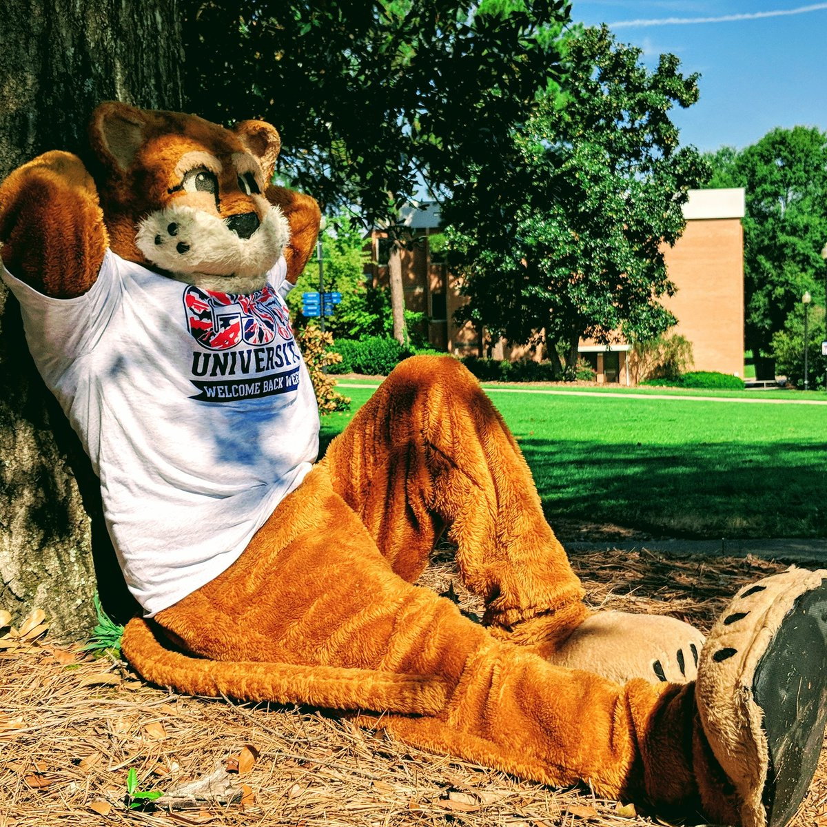 Waiting for Cougar Kick Off week like...<br>http://pic.twitter.com/yKo4G0M7hE