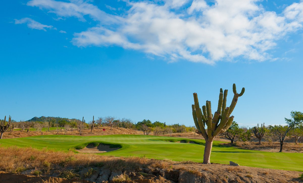El Cardonal, our first golf course @DiamanteCabo, utilizes the natural features and spectacular views of the Pacific Ocean to provide members and guests with a golf experience that players of all abilities can enjoy.