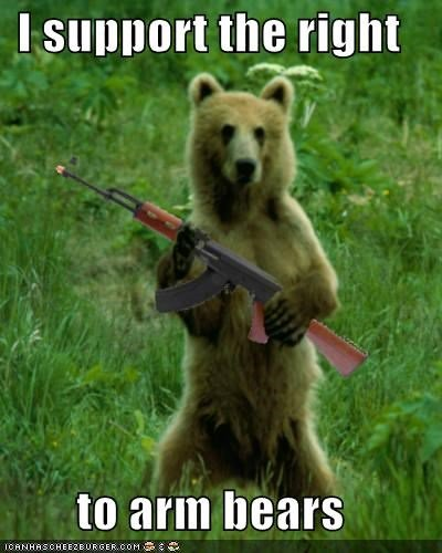 Right to arm bears  #WhatIStandUpForIn4Words <br>http://pic.twitter.com/i74qUYITUQ