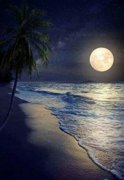 #INeverCanGetEnough vacation getaways... <br>http://pic.twitter.com/xnQGDw5UYA