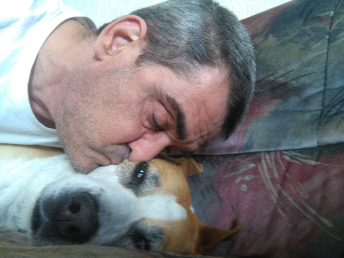 Chling with Daisy the dog. Just because #NationalLazyDay #10Ago <br>http://pic.twitter.com/T884NbHUD8