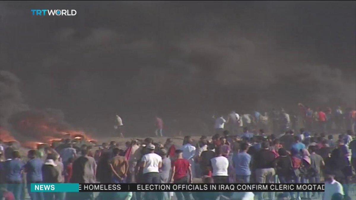 TRT World's photo on Gaza