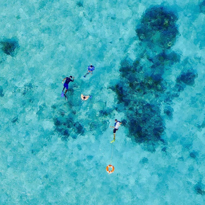 Imagine snorkeling in this sparkling blue waters. Belize is waiting for you to experience its watery wonders. 📷 @royalpalmcayebelize Best snorkeling tours in Belize 🐠 bit.ly/2vqNKiI