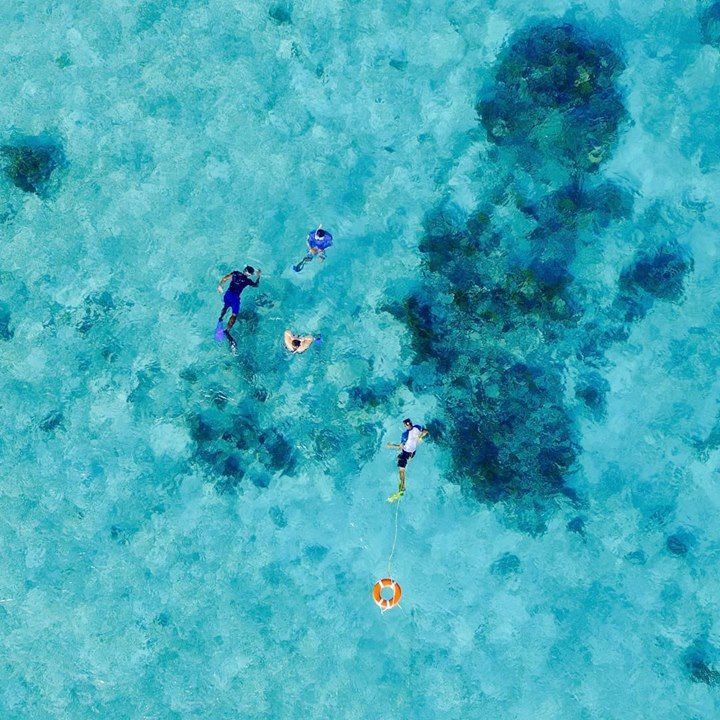 Imagine snorkeling in this sparkling blue waters. Belize is waiting for you to experience its watery wonders. 📷 @royalpalmcayebelize Best snorkeling tours in Belize 🐠 buff.ly/2vRzaQC