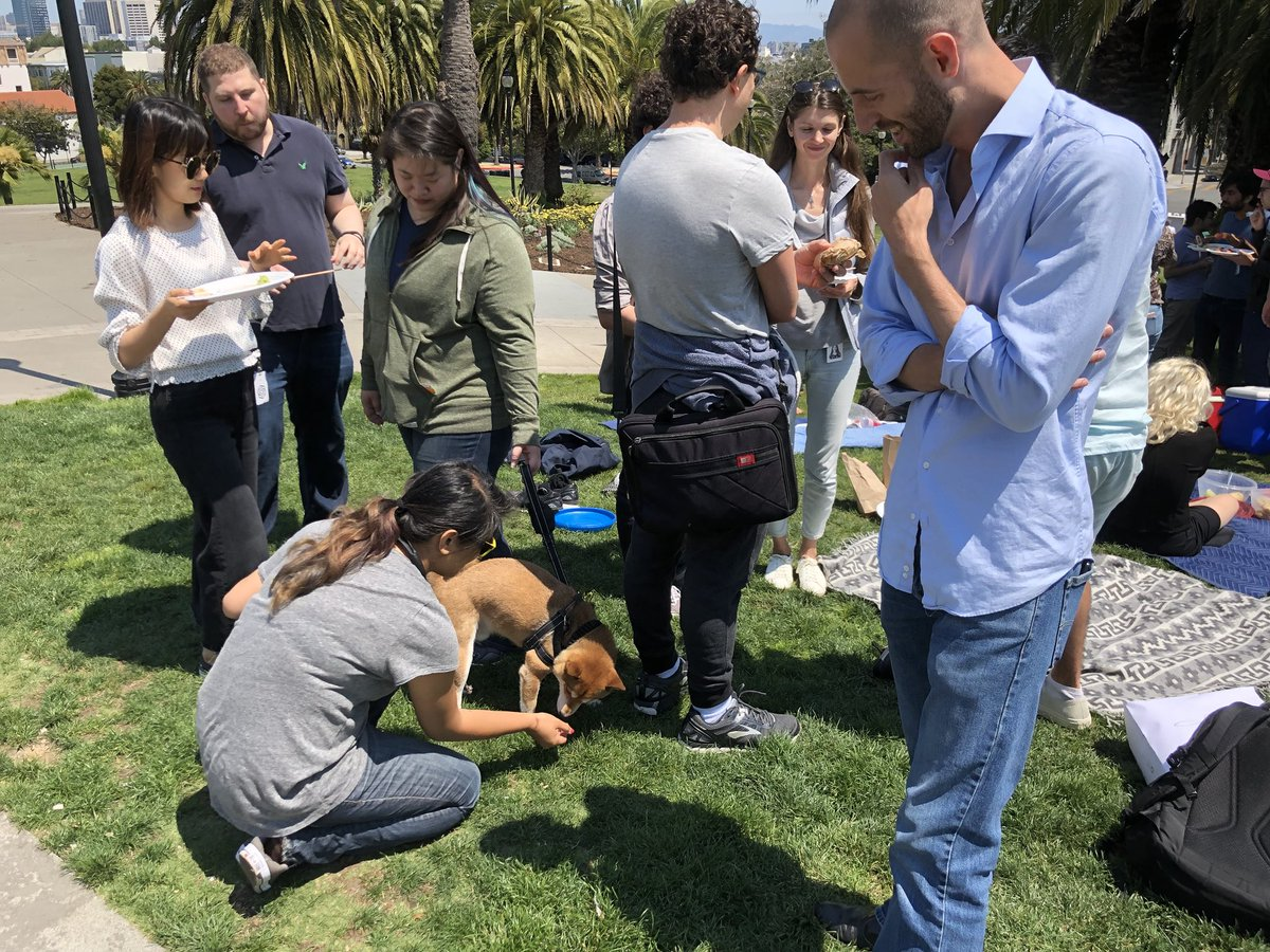 Quick break for an OpenAI potluck in Dolores Park. Then back to work :).