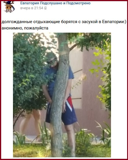 Через тривалу посуху аграрії не можуть використовувати 70% степового Криму, - Гримчак - Цензор.НЕТ 9903