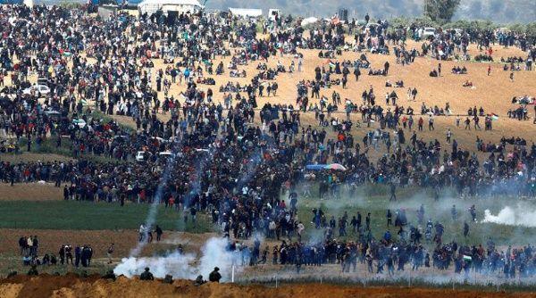 teleSUR TV's photo on Gaza
