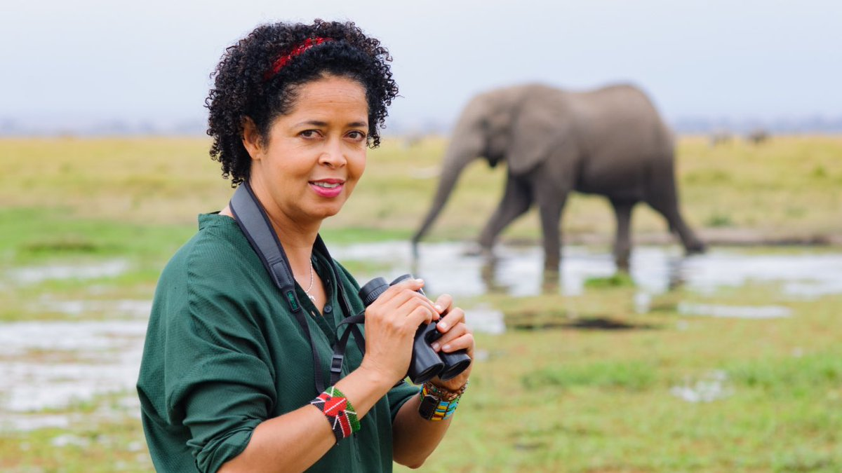 """Dr. Paula Kahumbu on Twitter: """"Kenya is one of the few countries where elephants are safe @wildlifedirect has partnered with @amarula to raise awareness around the world for every retweet @Amarula will"""