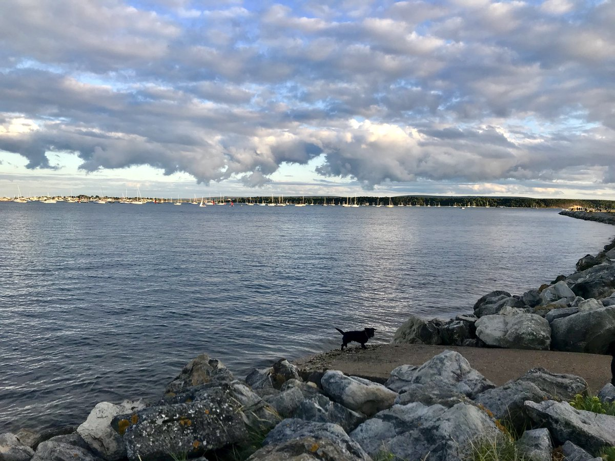 Evening pup walk at Baiter last night #seascape #pooleharbour #poole #dorset #clouds #sea #yachts #dogwalk<br>http://pic.twitter.com/ovwowr9sah