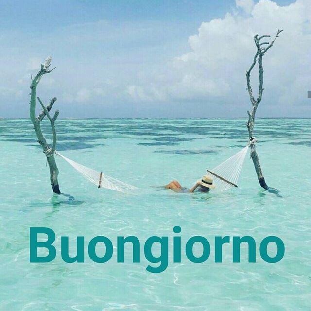 Paolettapaly On Twitter Buongiorno Carissima Festeggia