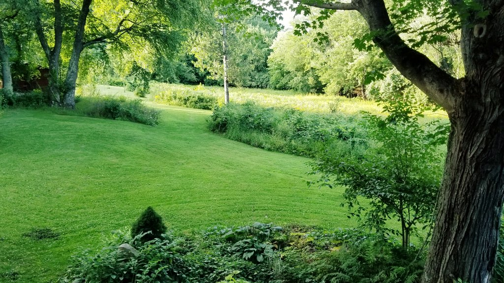 So much green after all of the rain. The grounds always look so pretty after a fresh mowing. NH farm life offers #introverts plenty to enjoy. #INFJ #amwriting #NH #farmlife @BHG @GWmag #hillcrestfarm<br>http://pic.twitter.com/0fiXlXIzFO