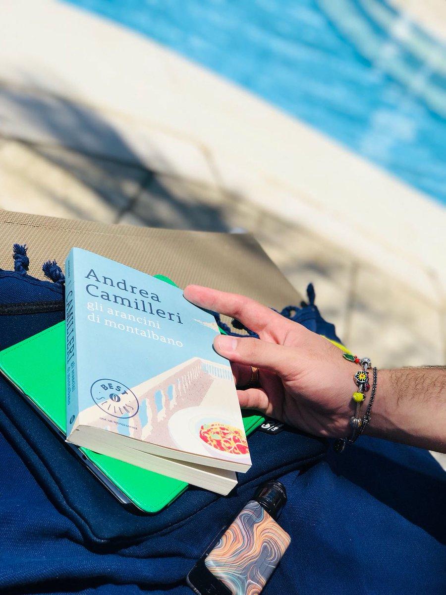 Montalbano dice di amare quel che resta della Sicilia ancora selvaggia: avara di verde, con le casuzze a dado poste su sbalanchi in equilibrio improbabile, e questo piace anche a me ma credo che sia piuttosto un gioco della memoria.#Camilleri #montalbano  - Ukustom