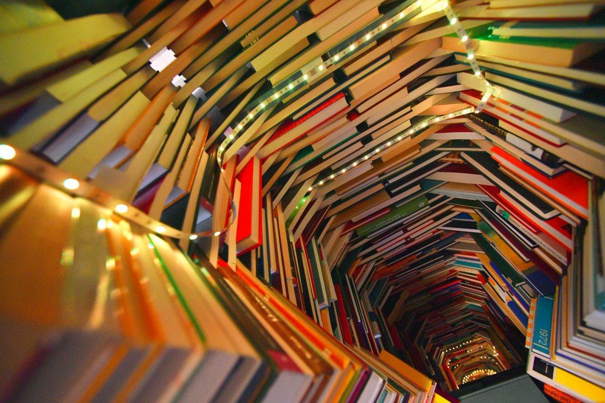 online redeemed in darkness paladins of darkness book