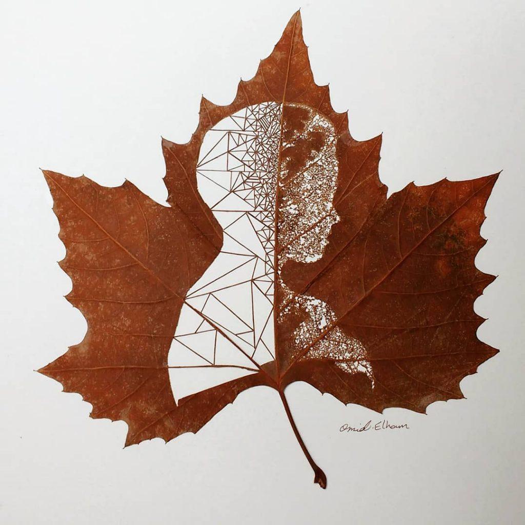 рисунки на листьях клена картинки спит меня