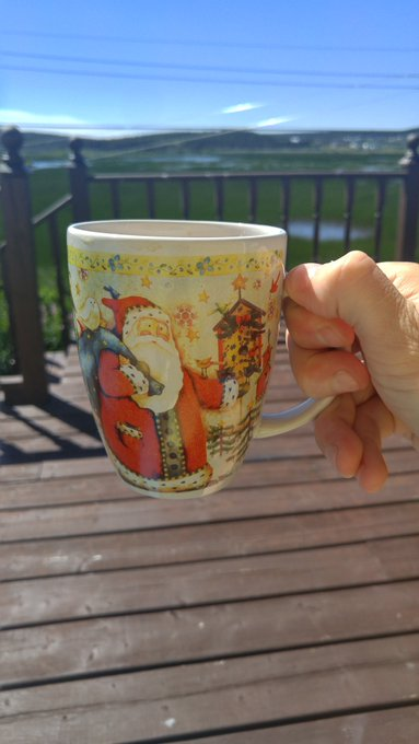 Soaking up the rays and enjoying coffee #2 on this beautiful Saturday morning! LOL Photo