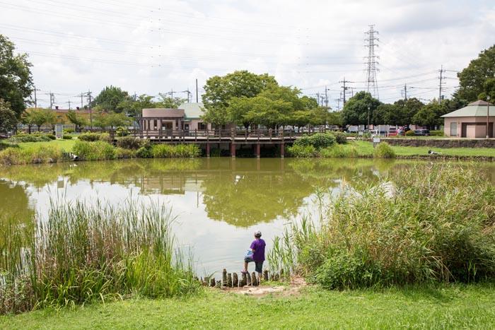 西城 沼 公園
