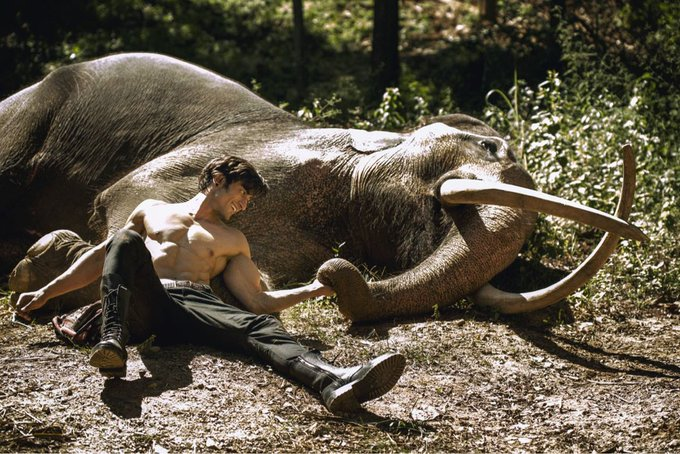 On #WorldElephantDay , @VidyutJammwal shares few stills from his upcoming film #Junglee Photo