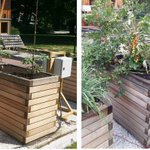 Our Slovenian partners are doing an interesting pilot project. Changing shades of tomatoes and wooden raised beds :) Join us in #FORESDA and #MaketheDifference