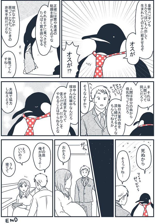 皇帝ペンギンの育休から学ぶ、妊娠中のお嫁さんのためにできること