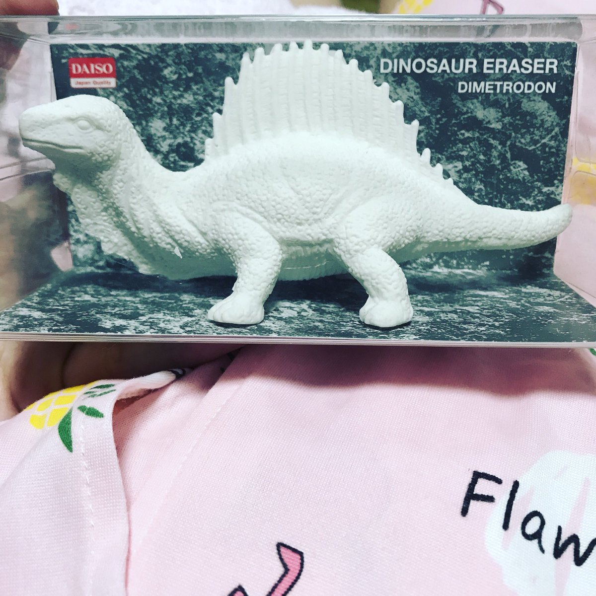 test ツイッターメディア - ダイソーで発見した恐竜消しゴム?? 可愛い(*^ω^*) #ダイソー #ダイナソー #恐竜 https://t.co/trcyHUtmHh