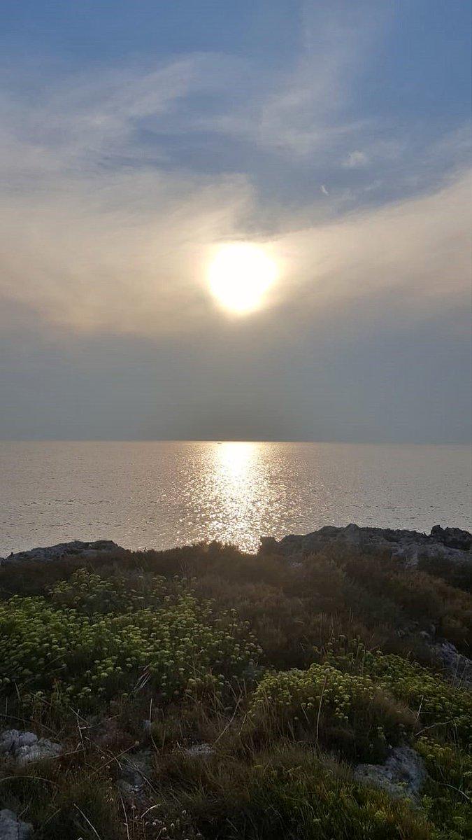 Al tramonto, brillano i sogni ed ergono folti cespugli di speranze.. BUONANOTTE TWITTERINI #ScrivoArte #buonanotte #ScrivoArte #scritturebrevi #ScrivoDellEssere #PensieriSenzaCatene #PerleDiPensiero #scrivodelmare #ScrivoDellEstate #salento  - Ukustom