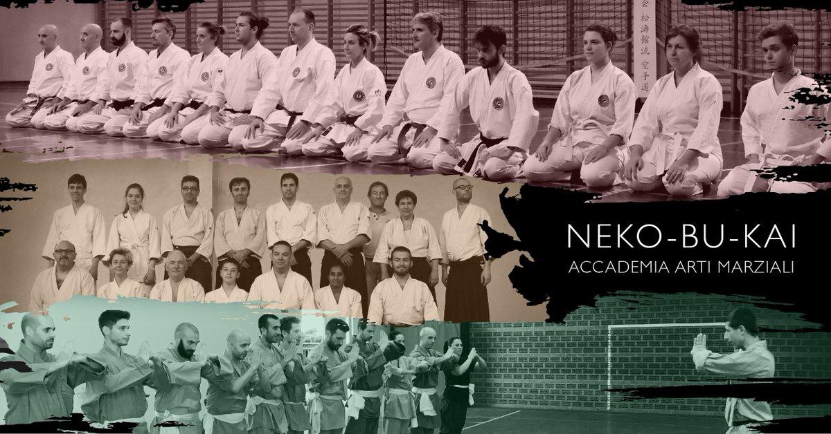 Ripresa delle Lezioni -  http:// www.nekobukai.it/ripresa-delle-lezioni-2/ #karate  - Ukustom