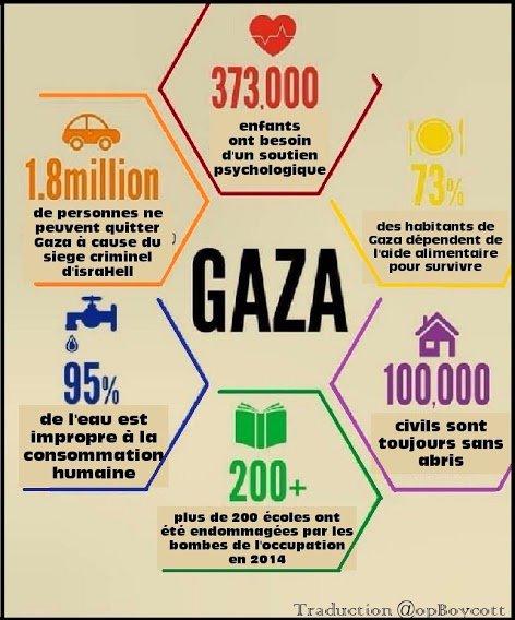 Scuole bombardate, ospedali distrutti, fosforo bianco su tutta la Striscia. I crimini di guerra israeliani contro #Gaza comprendono anche il blocco delle persone e delle merci, medicinali compresi. #StopGazaSiege  - Ukustom