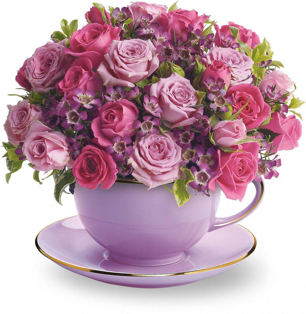 Смешные картинки, большие букеты роз картинки с добрым утром