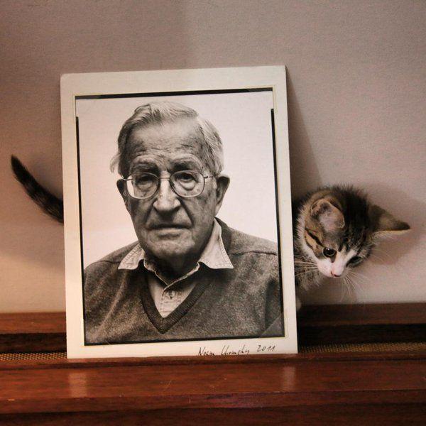 &quot;If we don&#39;t believe in freedom of expression for people we despise, we don&#39;t believe in it at all.&quot;  Noam Chomsky #Unity4J #NoamChomsky #sundayfunday #SundayMotivation <br>http://pic.twitter.com/VZmpmGpec3