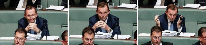 Tony Abbott Photo