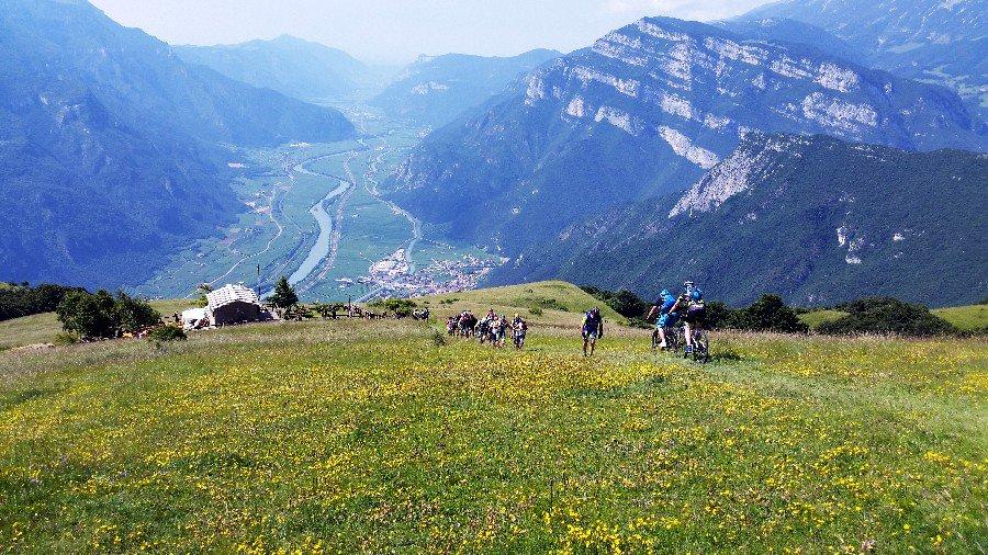 In sella ad una #mtb alla scoperta dei sentieri panoramici di #Brentonico e #MonteBaldo con sosta degustazione inclusa. Ecco più di 1000 metri di dislivello e 25 km tra malghe, fiori e panorami mozzafiato: #visitRovereto #travel #bike #montagnadiviaggi  https:// www.montagnadiviaggi.it/2018/08/percorso-mountain-bike-brentonico-monte-baldo-golosabici.html  - Ukustom
