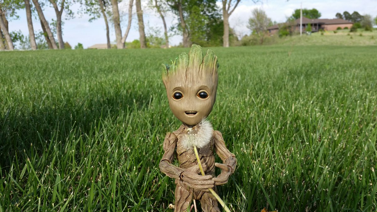 I am Groot!  #Achoo #WhereDidTheFluffGo #Sneeze #Dandelion #DandelionFluff  I am Groot!  #Achoo  #WhereDidTheFluffGo  #Sneeze  #Dandelion  #DandelionFluff   #groot#babygroot#iamgroot#wearegroot#twig#guardians#guardiansofthegalaxy#guardiansofthegalaxyvol2#gotg#gotg2<br>http://pic.twitter.com/QhLWDlS36G