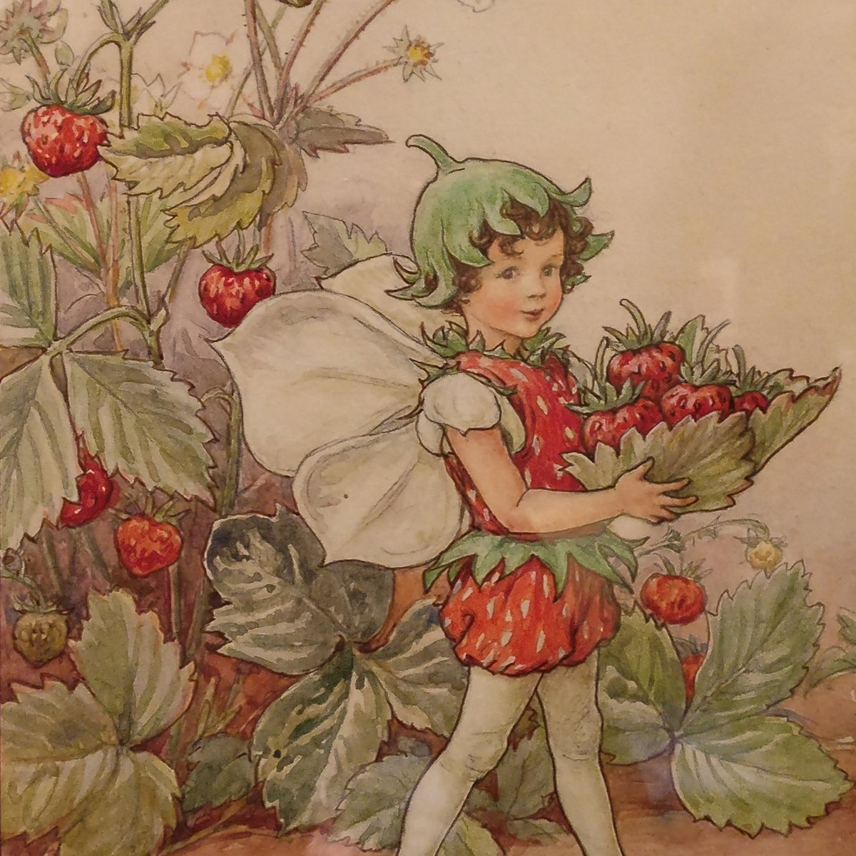 """garden museum on twitter: """"the strawberry fairy is helping us today"""