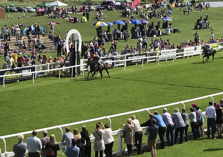 Mrs Hoo just does enough to get off the mark under Paul Hanagan. Another thoroughly enjoyable day out for our members again @RiponRaces join the club and get involved in the action! #winners #RT https://t.co/WnaDJpcabU