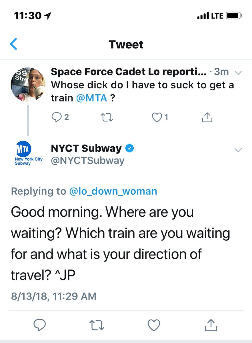 nyc subway about to risk it all