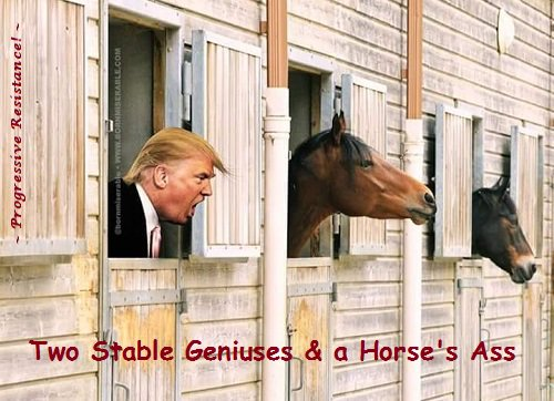 So then, #StableGenius - &#39;You KNEW she was a snake before you brought her in?&#39; What does that say about YOUR judgement, dude? It&#39;s downright adorable how Trump &amp; Co. are blasting Omarosa for having tapes of talks they claimed never happened. <br>http://pic.twitter.com/jNEWIuwtYe