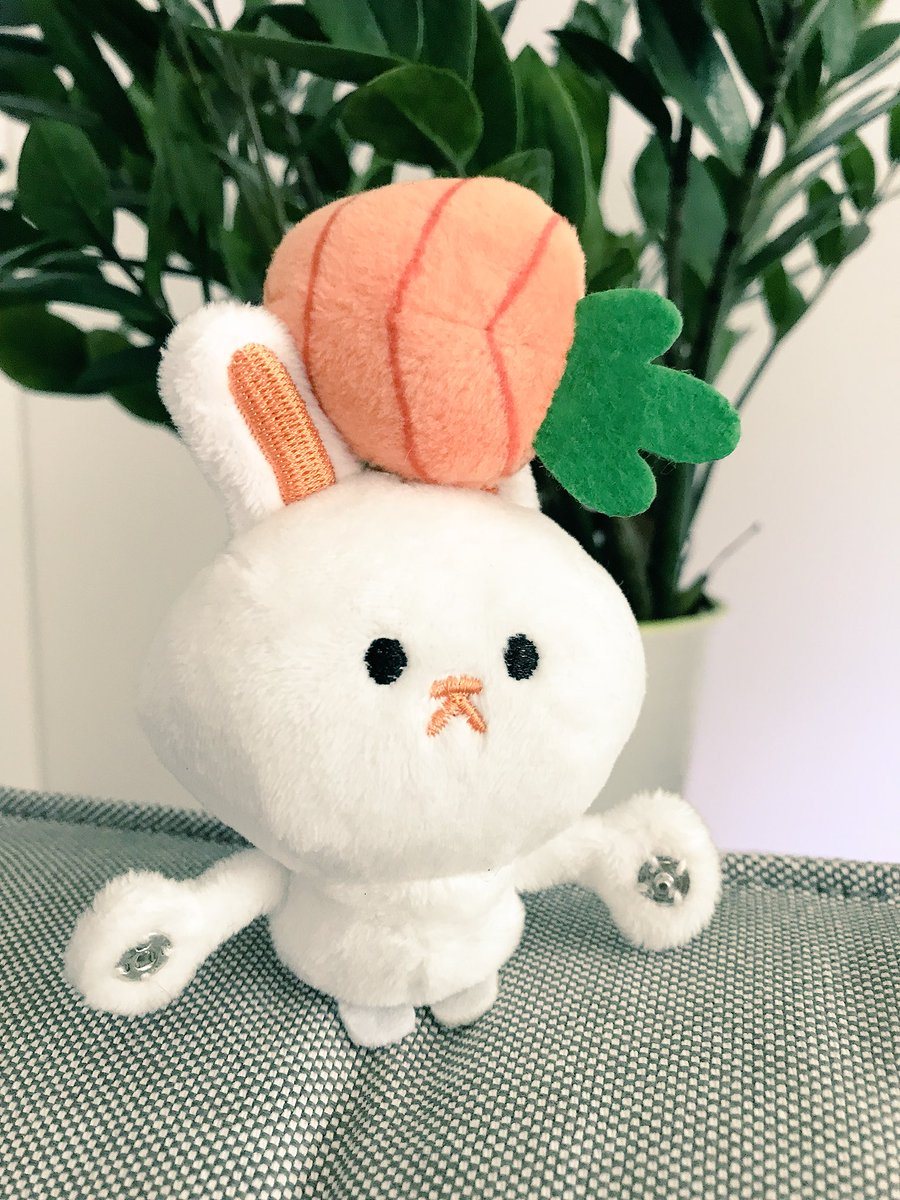 Look who came in the mail today!!! Snappies bun by @paperbeatstweet I love them 🐰