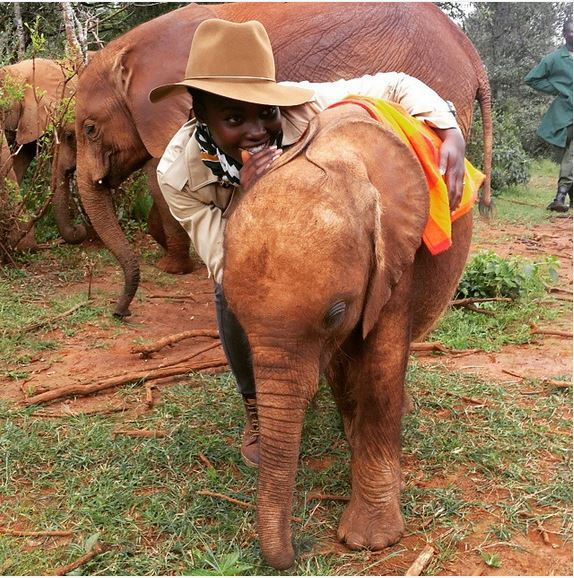 @Lupita_Nyongo @CalvinKlein Please, Lupita. Make some comments about the elephants. I greatly admire your love for them. Yestareday was #WorldElephantDay 😍 I really admire ur love for these beautiful creatures 🐘🐘🐘 Photo