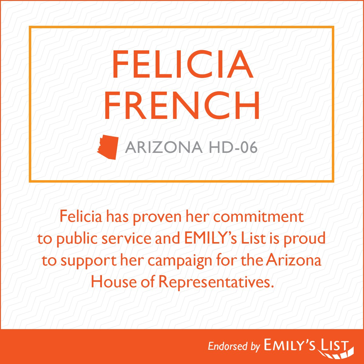 I am honored to be endorsed by @emilyslist who shares my support for #WomensRights.  Together with the #BlueWave2018, we will #GetOutTheVote in the #MidtermElections and flip the #AZhouse.<br>http://pic.twitter.com/Gre6zROM9E