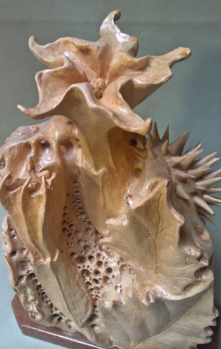 DATURA, basswood, artist Marco BianchiniSALE:  https:// www.ebay.com/itm/153131859055#wood #woodcarving #carving #woodworking #datura #stramonium #sculptures #woodsculpture #handmade #handcrafted #basswood #legno #artexhibition #arte #scultura #biomorphic #bois #art #sculpture #datura #art  - Ukustom