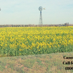 Image for the Tweet beginning: Reminder! Canola Sales Closing Deadline