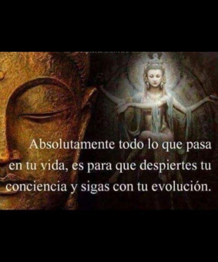 NAMASTÉ Feliz Martes !  Happy Tuesday!  #luz #love #Paz #Reflexiones #FraseDelDia #frases #24hPujadas  #FelizDiaDelAmigo #FelizFinde  #Collomb  #TheOpen  #Telefono #1DDRIVE #1FIRST #BananaGainDrive<br>http://pic.twitter.com/YCK0dabn7q