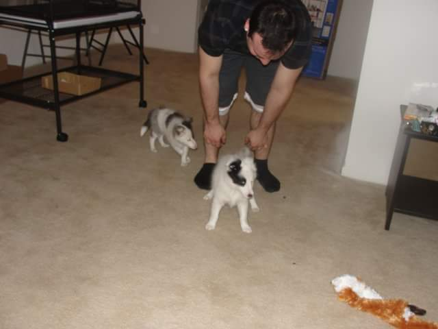 Day 5/30 this was the first day we brought him home. We didn&#39;t even have furniture yet in our first apartment. #RIPLUNABEAR <br>http://pic.twitter.com/lLgwLfAqsE