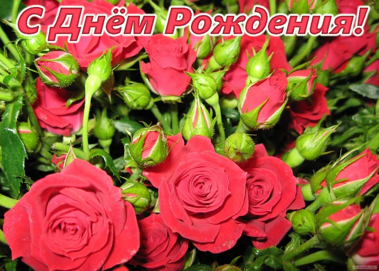 Поздравление с днем рождения цветы картинка, для поздравления юбилеем
