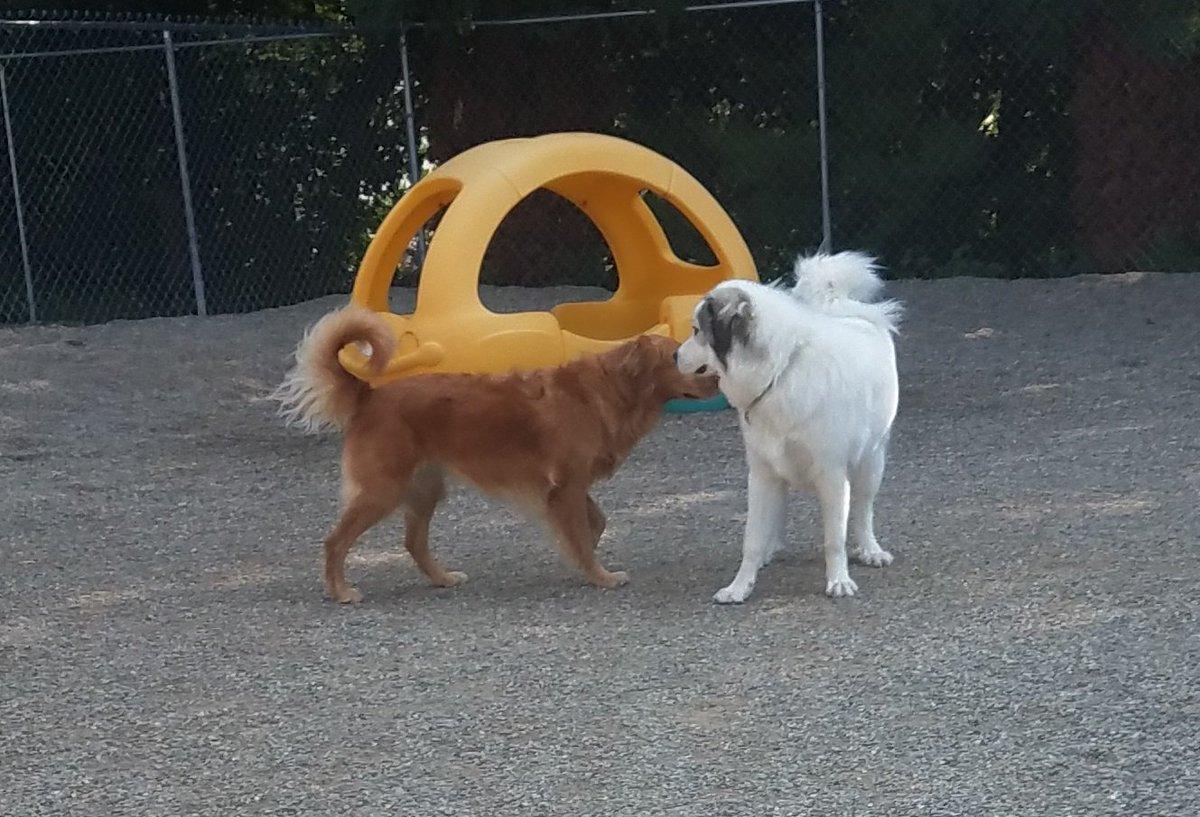 Maggie Mae and Gerdi share a secret