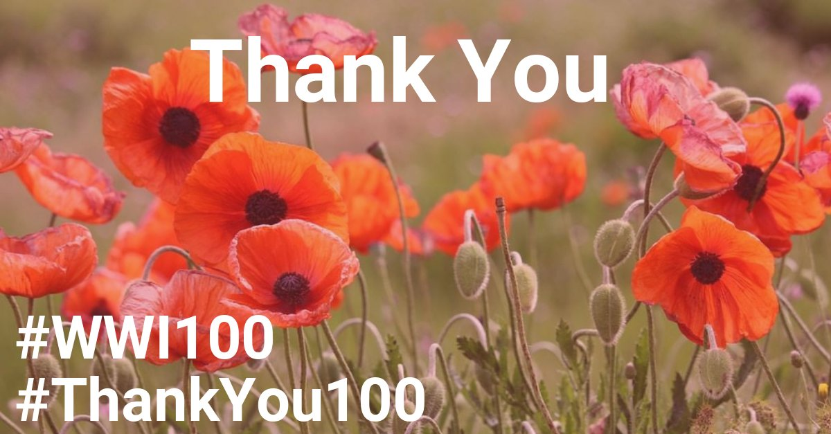 As we approach the centenary of the end of WW1, we join @PoppyLegion in saying #ThankYou to all those that fought and died for our freedom. Over the coming months, we&#39;ll be doing our bit to make sure future generations never forget. #ThankYou100 #WWI100  https://www. britishlegion.org.uk/remembrance/ww 1-centenary/thank-you/ &nbsp; … <br>http://pic.twitter.com/v76H369Vsy