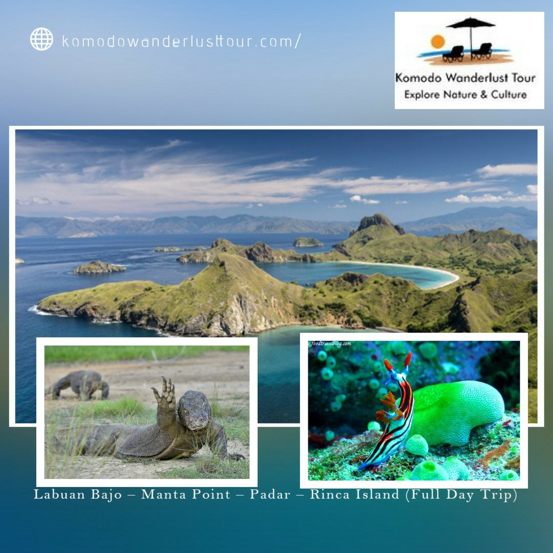 Komodo Wanderlust Tour Komodowanderlus Twitter 3d2n 1n On Boat In Hotel Book Your Trip Now Https Bitly 2mivut6 Labuan Bajo Rinca Island Travel Tourpic Ilqt2vly4c