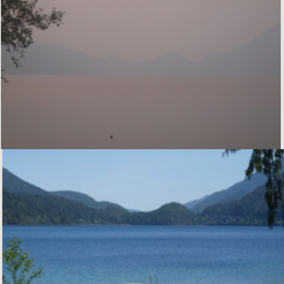 Check out the air quality on the #Olympic Peninsula. This is #LakeCrescent. Top image is from today, bottom shows visibility on a clear day  MORE &gt;&gt;&gt;  https:// q13fox.com/2018/08/13/smo ke-from-british-columbia-now-blowing-into-western-washington/ &nbsp; …  #Q13FOX<br>http://pic.twitter.com/0d5UWeOK9u