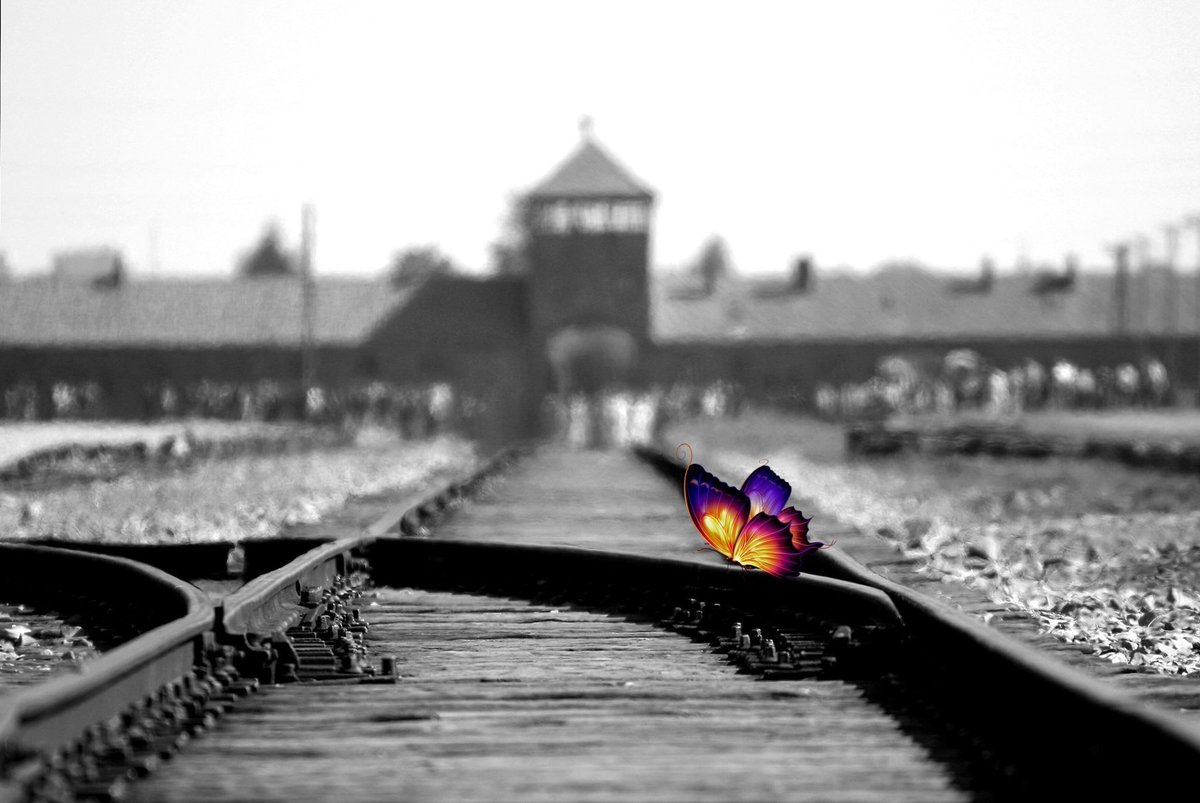 Ordinary People became Faceless Murderers. #NazisNEvil #ASMSG #tw4rw #indieauthor #IARTG #IAN #IndieBooksBeSeen  #RGBook #WW2 #GreatReads #mustreads #GoodreadsChoice  #RPBP #Holocaust  #cr4u #BookBoost #FreeBookPromotion #TimeforStorytelling #BookClubs  http:// amzn.to/2jChuBn  &nbsp;  <br>http://pic.twitter.com/qbnmxOVfwB