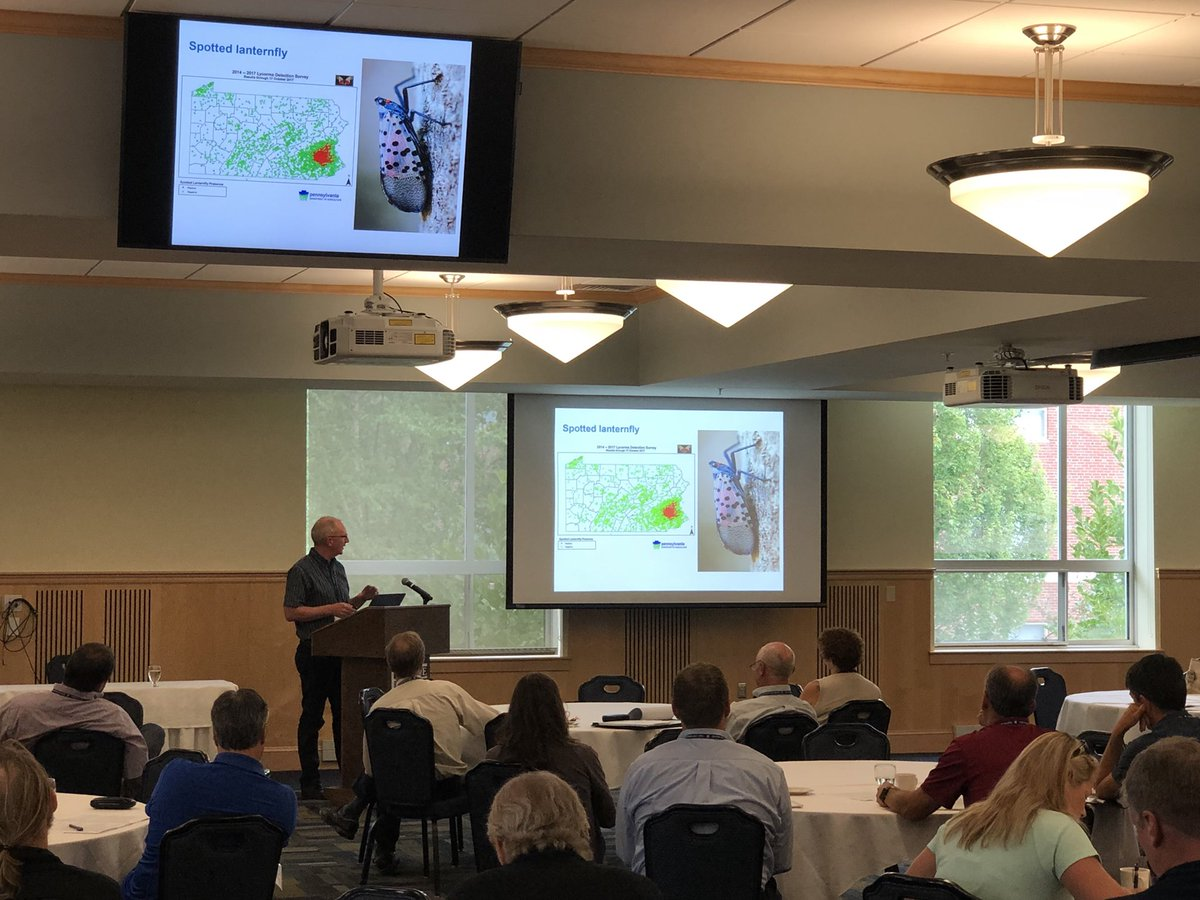 """Dr. Rufus Isaacs from Michigan State University discussing historical perspectives and future challenges for blueberry pest management. In the wake of SWD he feels like we can make progress on IPM and """"do better"""" @msuberrybugs @MSUExtension @MSUEntomology @MSUAgBio #NABREW2018<br>http://pic.twitter.com/FtWSZg5I7N"""